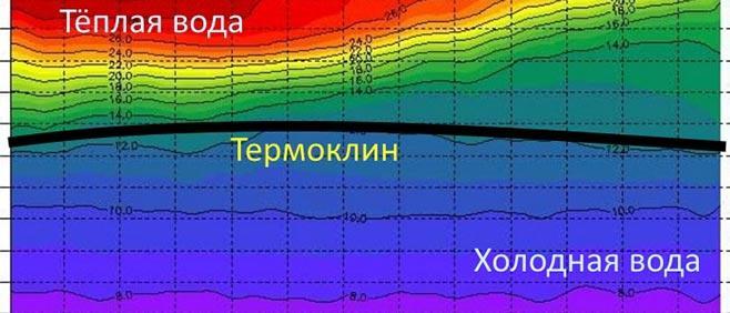 Схема термоклина