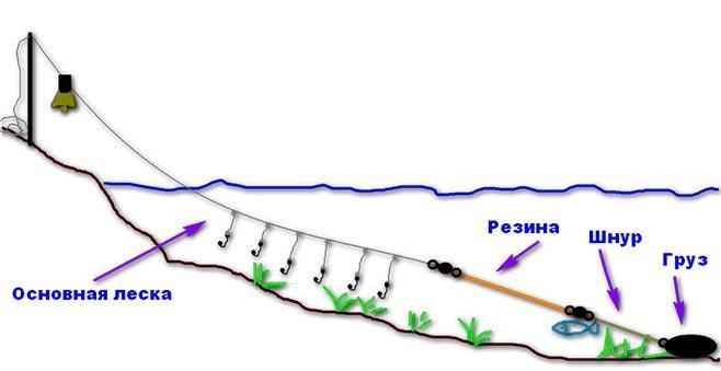 рисунок - схема донки резинки