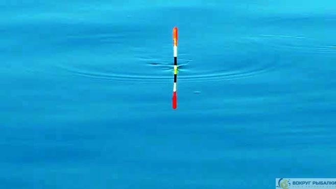 поплавочная антенка над водой