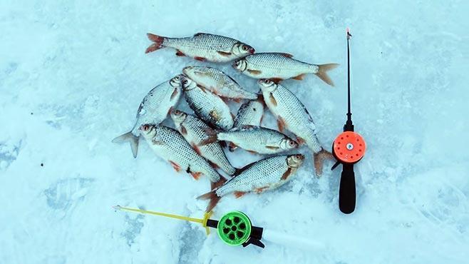 Зимние удочки и улов на них
